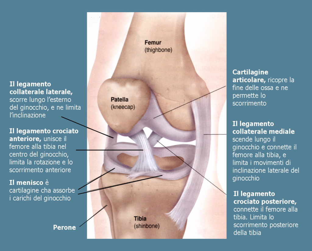 davidecauti-artroscopia-del-ginocchio